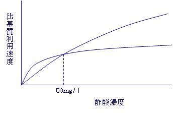 増殖曲線1.JPG