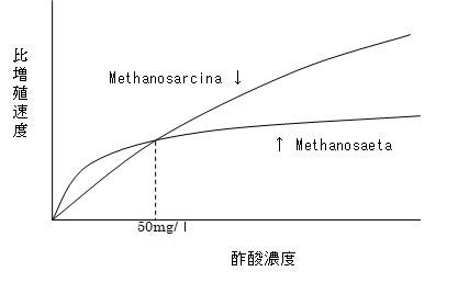 増殖曲線2.jpg
